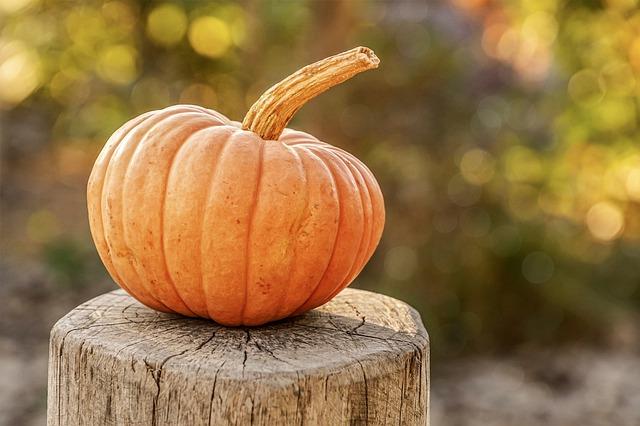 pumpkin 4454745 640, Anne Arundel County, Johnson Lumber