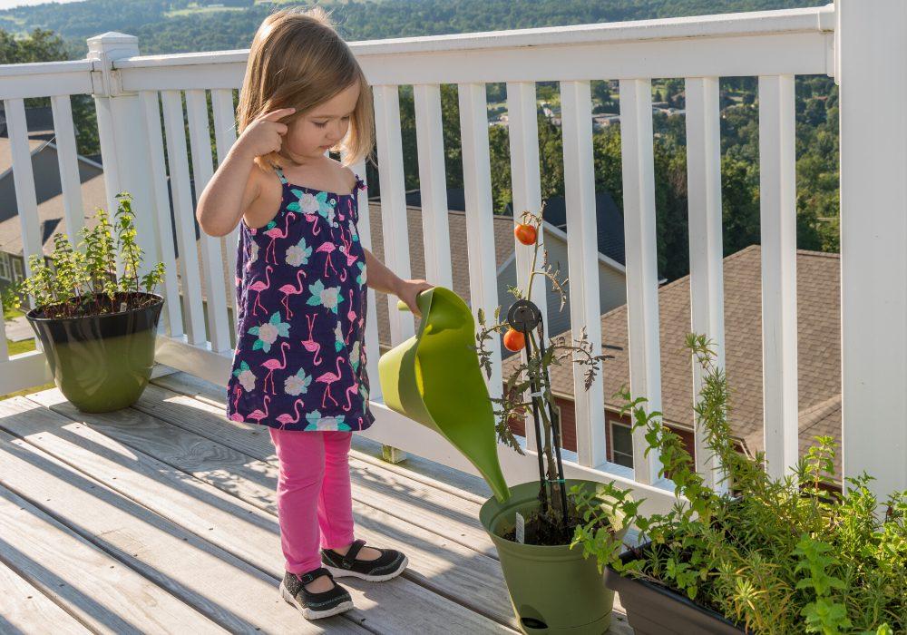 kid friendly deck safe, Anne Arundel County, Johnson Lumber